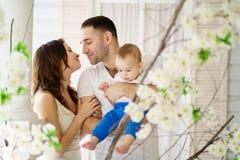 Ein reizendes Baumhaus, eine Vogelfamilie, eine Taste der Liebe und viele Herde Gl?ckliche Muttergesellschaft und Baby lizenzfreie stockfotos