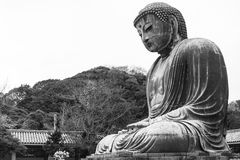 Ein riesiger Buddha in Japan Stockfotografie