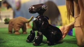 Ein Roboterhund hört auf einen menschlichen ` s Befehl Moderne Robotertechnologien Künstliche Intelligenz Kybernetische Systeme h stock footage