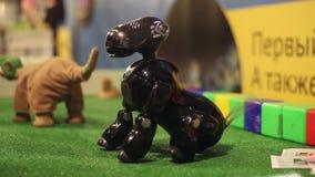 Ein Roboterhund sitzt und wedelt sein Endstück Moderne Robotertechnologien Künstliche Intelligenz Kybernetische Systeme heute stock video