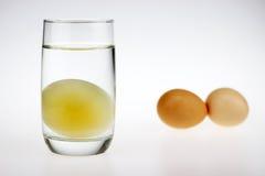 Ein rohes Ei ohne Oberteil Stockbilder