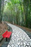 Ein roter Stuhl in der Bambuswaldung Lizenzfreies Stockfoto