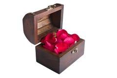 Ein rotes rosafarbenes Blumenblatt im Kasten Stockbild