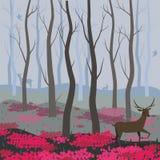 Ein Rotwild im feenhafter Waldvektorhintergrund f?r den Entwurf von Karten, Fahnen, Webseiten, Flieger und andere vektor abbildung