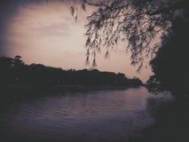 Ein ruhiger Abend und eine Aufwartung Stockfoto