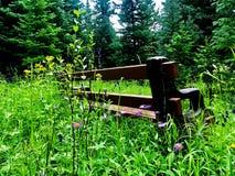 Ein ruhiger Platz zu sitzen Stockbild