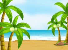 Ein ruhiger Strand Stockfotos