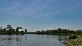 Ein ruhiger Teich in der Sommerzeit Stockbilder