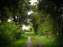 Ein ruhiger Weg Stockfoto