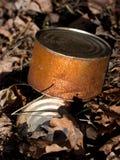 Ein rustry Abfalleimer gelassen im Wald Lizenzfreie Stockfotos
