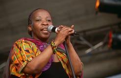 Ein Sänger, der an einem Konzert in Südafrika durchführt stockfotografie