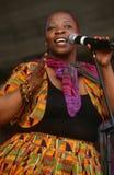 Ein Sänger, der an einem Konzert in Südafrika durchführt lizenzfreies stockfoto