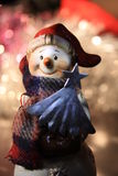 Ein süßer Weihnachtsschneemann Lizenzfreie Stockbilder