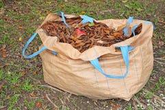 Ein Sack getrocknete Blätter Lizenzfreies Stockbild