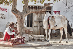 Ein sadhu und eine Kuh lizenzfreies stockfoto