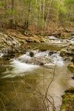 Ein Saiblings-Strom in blauen Ridge Mountains von Virginia, USA Stockbilder