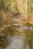 Ein Saiblings-Strom in blauen Ridge Mountains von Virginia, USA Lizenzfreies Stockfoto