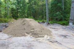 Ein Sandhaufen im Wald Lizenzfreie Stockfotos