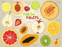 Ein Satz farbige Konturen von Fruchtscheiben stock abbildung
