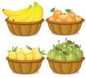 Ein Satz Frucht im Korb stock abbildung
