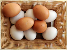 Ein Satz Gelb und weiße Eier Stockbilder