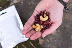 Ein Satz getrocknete Beeren und Nüsse in der Palme Ihrer Hand Acajoubaum und Moosbeere Stockfotos