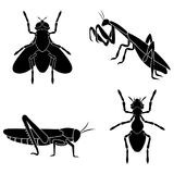 Ein Satz Insekten besteht einer Ameise, einer Fliege, einer Gottesanbeterin und aus einem Ort Stockfoto