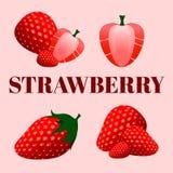 Ein Satz verschiedene Erdbeeren gruppiert und getrennt vektor abbildung