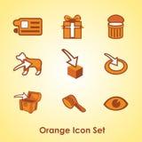Ein Satz von neun verschiedenen orange Gegenständen vektor abbildung