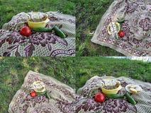 Ein Satz von vier Fotos in einer Art des Fleisches auf Aufsteckspindeln und des Gemüses auf der Decke für Picknick oder das Kampi Lizenzfreie Stockbilder