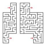 Ein Satz von zwei rechteckigen Labyrinthen mit einem Eingang und einem Ausgang Einfache flache Vektorillustration lokalisiert auf Stock Abbildung