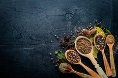 Ein Satz wohlriechende Gewürze Eine Mischung des schwarzen und roten Pfeffers, Koriander, Paprika Stockbilder