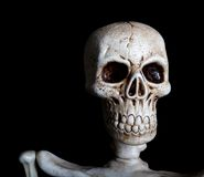 Ein Schädel auf einem schwarzen Hintergrund mit Exemplarplatz Stockfotos