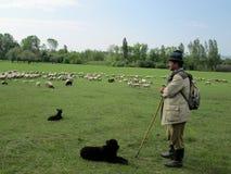 Ein Sch?fer mit seinen Hunden und seiner Menge, Lok Serbia stockfotos
