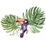 Ein schöner Aquarellblumenstrauß mit einem tukan und Blättern einer Palme, der Blumen oder des Plumeria Lizenzfreies Stockbild