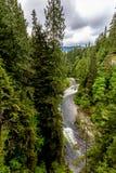 Ein schöner blauer Fluss in einem Urregen-Wald lizenzfreies stockfoto