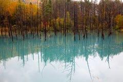 Ein schöner blauer Teich in Hokkaido, Japan Lizenzfreie Stockfotos