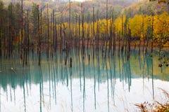 Ein schöner blauer Teich in Hokkaido, Japan Lizenzfreie Stockbilder