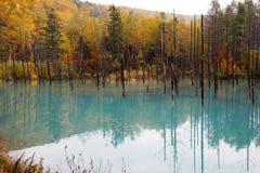 Ein schöner blauer Teich in Hokkaido, Japan Stockbilder