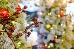 Ein schöner Blumenstrauß der roten Blumenverzierung, die von einem Baum der weißen Weihnacht hängt lizenzfreie stockbilder