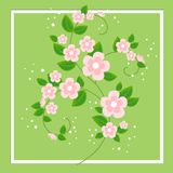 Ein schöner Blumenstrauß für Glückwünsche Empfindliche Niederlassungen von rosa Blumen Wiese voll des gelben L?wenzahns Auch im c vektor abbildung