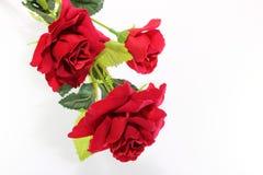 Ein schöner Blumenstrauß von roten Rosen auf Weiß mit Kopienraumhintergrund Liebes- und Romancekonzept Stockfotografie