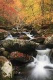 Ein schöner Gebirgsstrom im rauchiger Bergnationalpark Stockbild