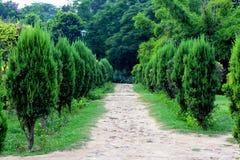 Ein schöner grüner Park und ein Weg in ihm Lizenzfreie Stockfotos