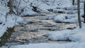 Ein schöner haarscharfer Strom im Winter mit Schnee fließt Holz durch stock video