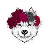 Ein schöner Hund in einem Kranz von Rosen und von Pfingstrosen reinrassig lizenzfreie abbildung