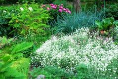 Ein schöner landschaftlich gestalteter Garten Stockfotos