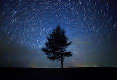 Ein schöner nächtlicher Himmel, die Milchstraße, gewundene Sternspuren und Bäume Stockfoto