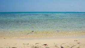 Ein schöner natürlicher Strand in karimun jawa oder Java-Insel mit sonnigem Tag und vlear blauem und grünem Meer stockbild