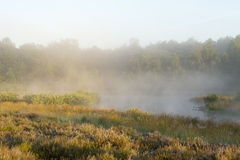 Ein schöner nebeliger Morgen Lizenzfreie Stockbilder